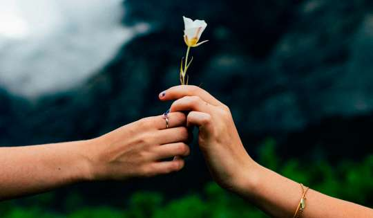 La importancia de compartir en nuestras vidas